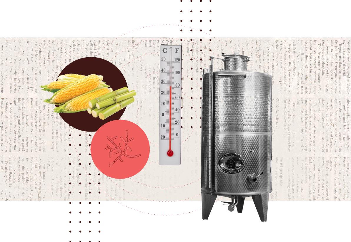 PD-Article-Fermentation-Alchemy-4-2